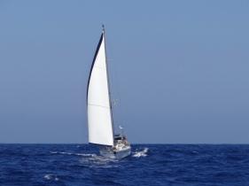 Sea You en régate