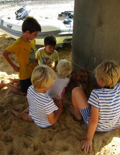 Lècheyouk, le chien adopté des enfants
