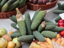 Banane-Ananas: fruit de Madère